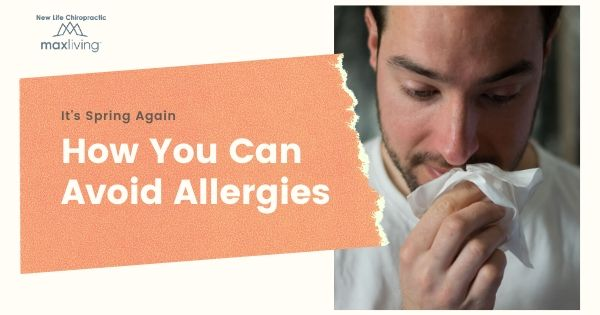 how to avoid Spring Allergies